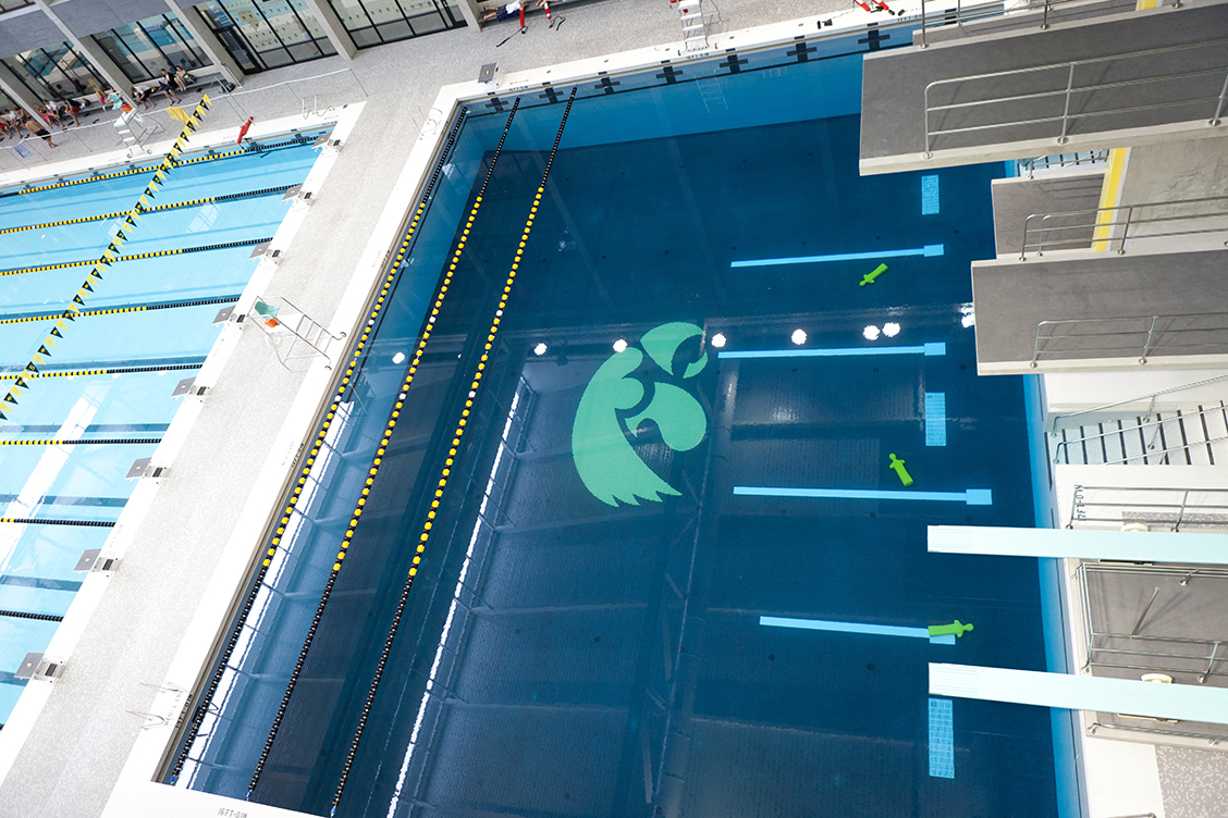 Image of Diving Platform at U of I Aquatic Center